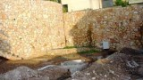 denya_haifa (4)