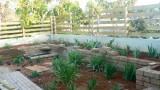 garden_19