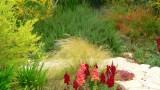 garden_22