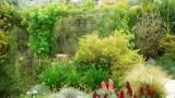 garden_23