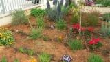garden_4