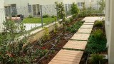 garden_7